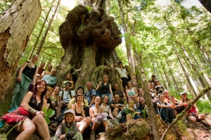 Photo Courtesy of The Ancient Forest Alliance